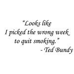 Airplane - Ted Bundy