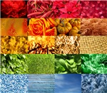 Rainbow Photography Collage