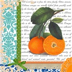 Vintage Orange Fruit Collage
