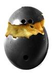 Bowling Chick