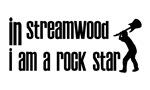 In Streamwood I am a Rock Star