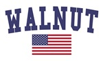 Walnut Creek US Flag