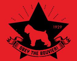 Bouvier Star Icon