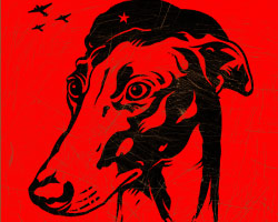 Greyhound Revolution Icon