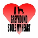 A Greyhound Stole My Heart