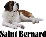 Saint Bernard
