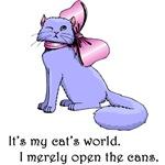 My Cat's World