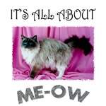 All About ME-OW Ragdoll
