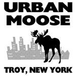 Urban Moose, Troy, NY