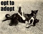 Opt To Adopt Cat T-Shirts