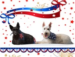Fourth of July Scottie Gifts
