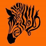 Orange Zebra