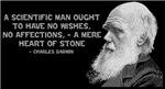 Darwin - Face - Stone