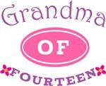 Grandma of 14 T-shirt Gifts