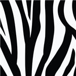 Zebra Striped black and white pattern