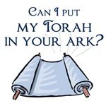 Can I put my Torah in your Ark?