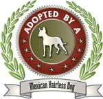 Adopted By Mexican Hairless Dog