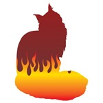 Maine Coon Flames