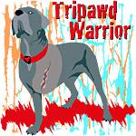 Tripawd Warrior Bellona