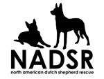 NADSR Classic Logo