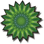 Peacock Mandala Kaleidoscope T-shirts & Gifts