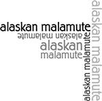 Alaskan Malamute Multi