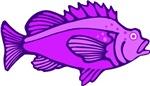 Purple Fish T-shirts & Gifts