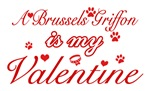 A Brussels Griffon is my valentines