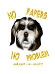 No Papers No Problem