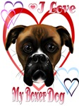 I Love My Boxer Dog