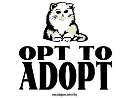 OPT TO ADOPT (cat)