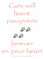 CATS WILL LEAVE PAWPRINTS FOREVER ON YOUR HEART