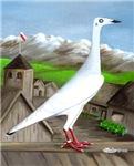 Polish Srebrniak Pigeon