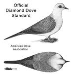 Diamond Dove Standard