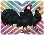 Rosecomb Rooster and Hen