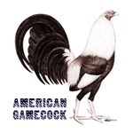 American Gamecock