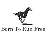 Born To Run Free