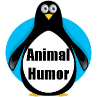 Animal Humor T-shirts and Gifts