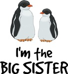 Im the Big Sister Shirts