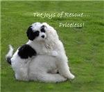 THE JOYS OF RESCUE.....