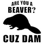 Are You A Beaver Cuz Dam