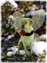 Fairy Dog Leela Christmas