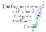 GANDHI GRATITUDE