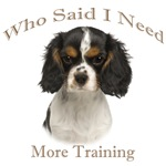 Cavalier King Charles Spaniel Needs Training