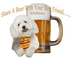 Maltese Share A Beer With Your Best Friend