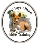 Basenji Needs More Training