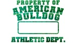 Property of American Bulldog