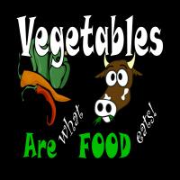 Politically Moderate T-Shirts & Bumper Stickers