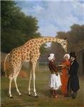 The Nubian Giraffe