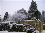 Photos of Snow